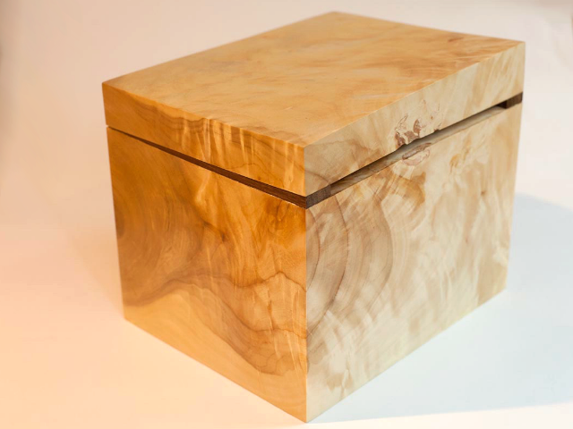 green poplar box